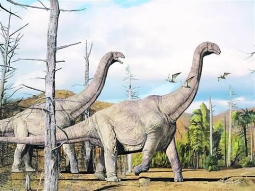 被当作药材的恐龙 - 邢立达 - 邢立达的恐龙频道