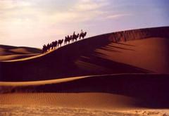 心路——建博周年感诗九首【疏勒河的红柳原创】 - 疏勒河的红柳 - 疏勒河的红柳【原创博客】
