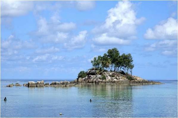 [原]塞舌尔-马埃岛(04) - Tarzan - 走过大地
