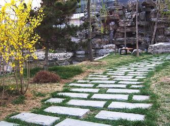 儿子四年级作文之《美丽的小花园》