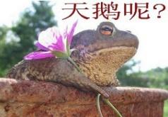博客幽默图片收藏 - 想不通 - wudiyutianxiaqiu 的博客