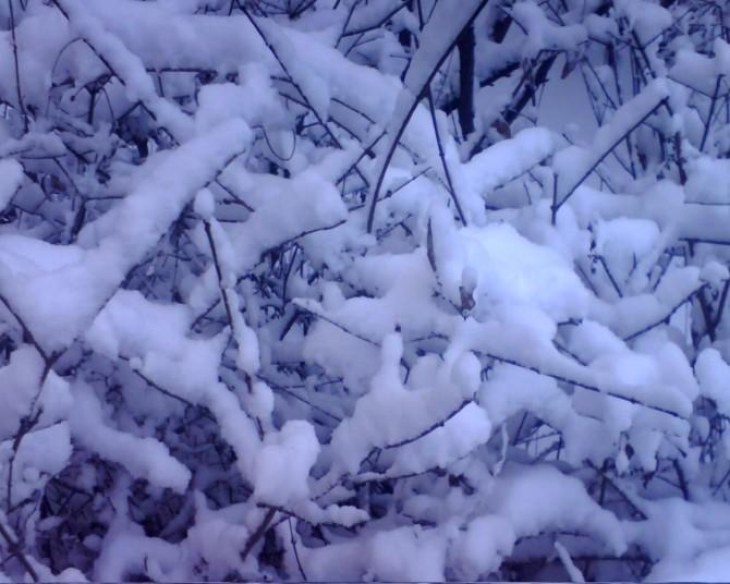 【原创】《大 雪》 - 方程 - qianbaiwanren的博客