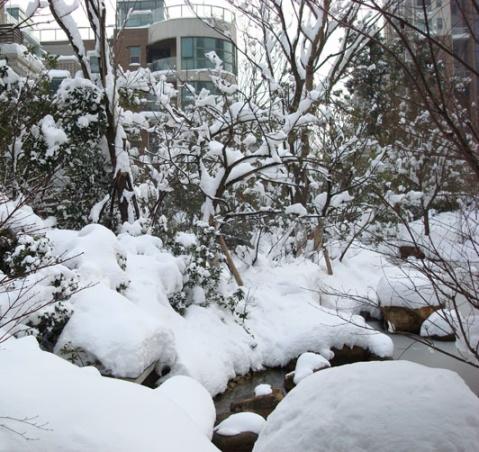 雪暴 江南 ---- 一个真实的童话 (原创) - 远帆 - 远  帆 的海边花园