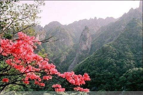 博友名联 - 草根 - 草根馨园
