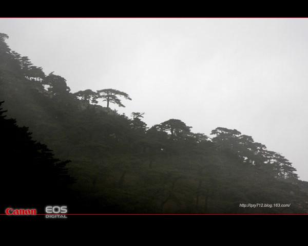 水墨泰山 - 七月的雨 - 过好每一天