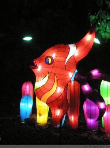 原创兰州市民广场的灯艺展 - 兰州园丁ljm44713 - 我的博客原创照片,欢迎指导