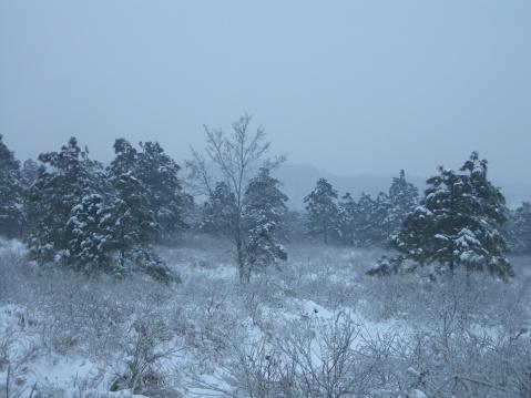 【原创】第 四 场 雪 - 大隐吕山 - 大隐于朝 中隐于市 小隐于野