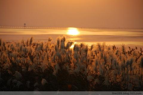 明月湾的自然景色 - qinweiping1956 - 吴中山人家