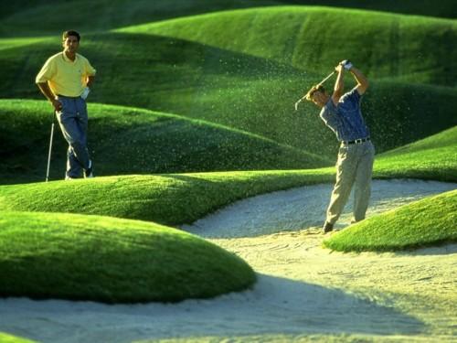 高尔夫基本常识 什么是高尔夫 湖北高尔夫 华乐兴高尔夫学高清图片