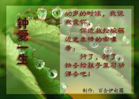 钟爱一生  《音画》 - 红酒百合 - 百合伊甸园