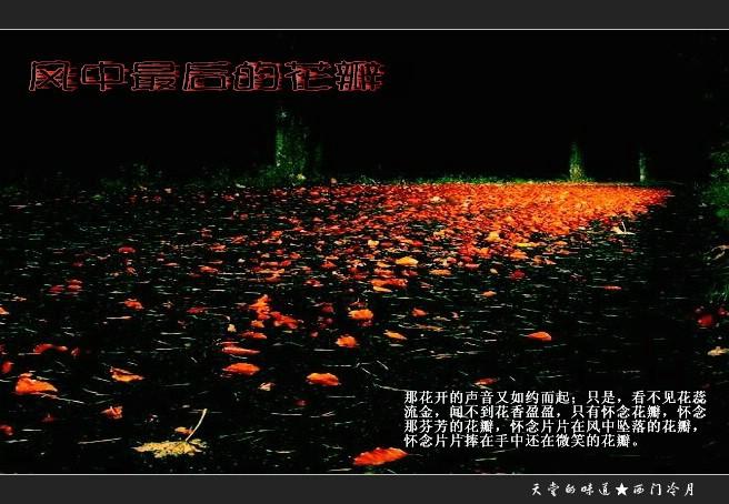 【天籁纯音】风中最后的花瓣 To风清月皎 - 西门冷月 -                  .