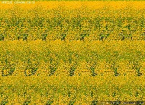2009年5月30日 - 陈立洪--周易预测 - 陈立洪--周易预测的博客