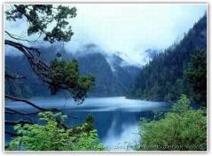《原创》心之湖 -           如莲心语 - 如莲心语