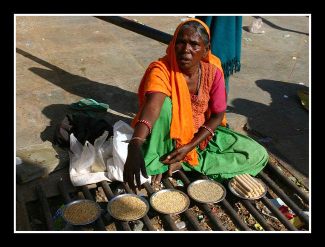 (原创图文)印度(8)——琥珀堡 - 照看天下 - 照看天下的博客