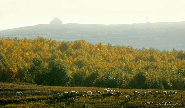山西,那些超乎我们想象的美景  - 空谷幽兰 - 空谷幽兰的博客