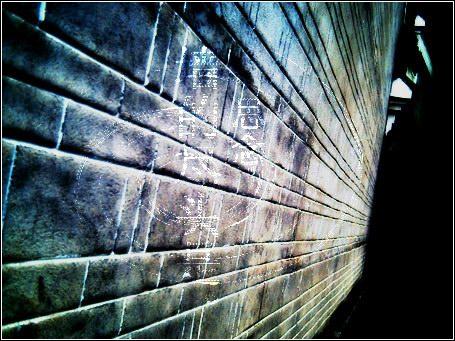 北川日记(二) - 蓝十字心理援助——绵阳站 - 蓝十字心理援助——绵阳站博客
