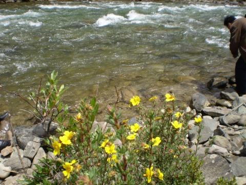 西藏行之四:见证江河(原创) - 不老的老人 - 不老哥的博客