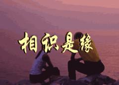 走进网络 - 清清百合 - qqbh温馨小屋