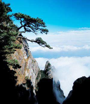 各个月份旅游好去处 - sky - 我的博客