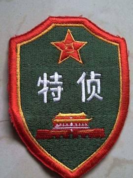 中国军队肩章臂章 组图图片