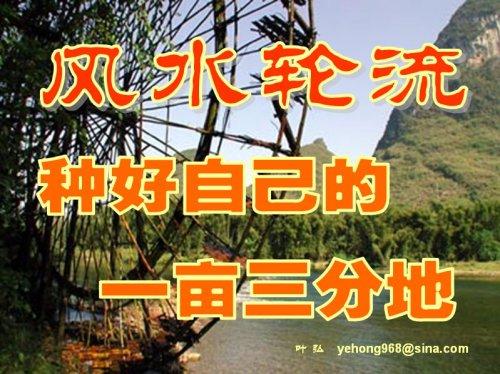 风水轮流——种好自己的一亩三分地 - 叶弘 - 叶弘 谈股市股民股票