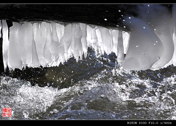 【原摄】溪流边的冰棍挂(13P) - 加贝先生 - 加贝先生的博客