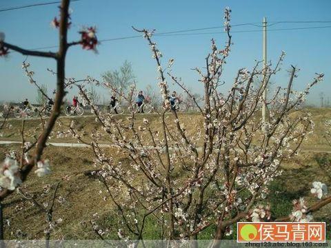 山西画报刊登骑游队图片 - 大嶷山人 - zhng123.abc的博客