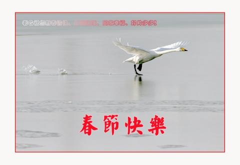 春节快乐! - *深秋_闲雨* - *深秋_闲雨*的博客
