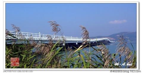 摄影群里博友拍太湖秋景 - qinweiping1956 - 吴中山人家
