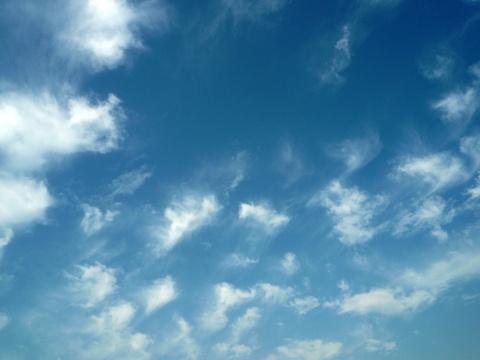 [原创]  2008年7月6日清晨依窗静看云卷云舒(图) - 幽兰猗猗 - 幽兰的心灵养吧