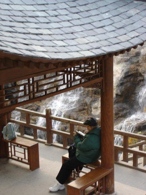 北京之秋:黄叶村,樱桃沟,卧佛寺 - null - 娜斯