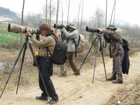 2009年2月24日 - zhuhuanainiao - 朱鹮爱鸟协会