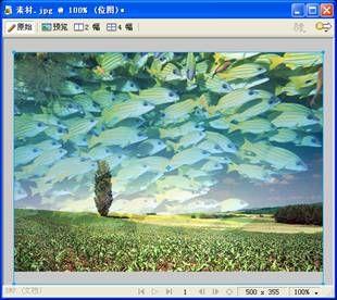 【fw教程】Fireworks CS3蒙版基础教程 - 玫瑰夫人 -