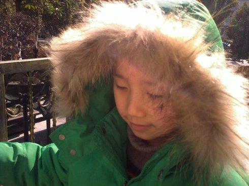 冬天里的懒蛇听谢安琪 - 饶雪漫 - 饶雪漫博客