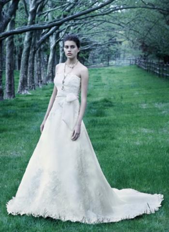 纽约设计师Lazaro秋季婚纱摄影作品 - 五线空间 - 五线空间陶瓷家饰