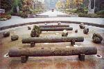 2004年01月01日 - zyltsz196947 - zyltsz196947的博客