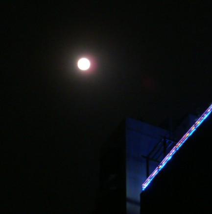 今天中秋节 - SARA - JUST  SARA