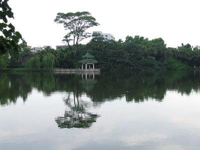 翠湖柳岸 - lq - LQ的博客