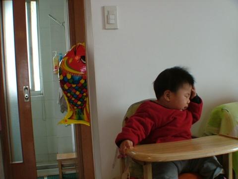 2009.2.14我周岁啦!!!(一) - 宸欢 - 张宸欢的网家家
