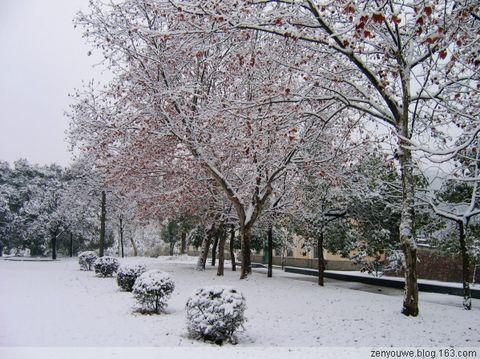 雪境 - 真悠 - 我的博客