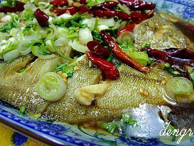 美丽的爱情鱼---(为节日添彩的5道赏心悦目的美味鱼 - 可可西里 - 可可西里