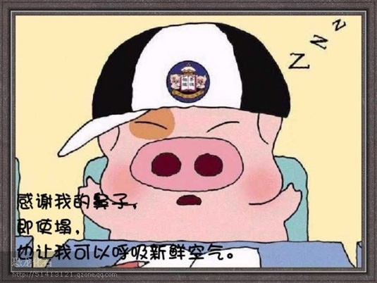 一只猪的经典语录 - 空谷幽兰 - 空谷幽兰的博客