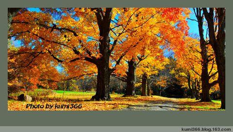 秋色小品 - kumi366 - kumi366的博客