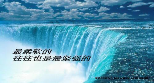 杨石头想哪说哪24-生命的圆韧力 - 杨石头 - 杨石头网易分舵