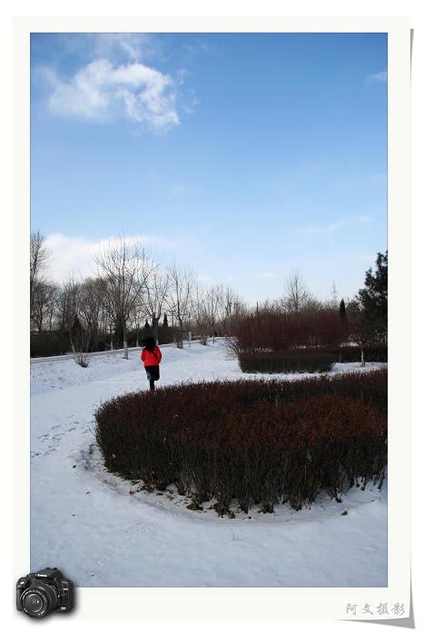 冬日暖阳【原创】 - 心情驿站(阿文) - 心情驿站【阿文】