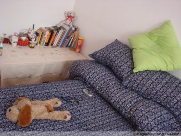 搬  新  窝  喽~~~ - 叶可 - 猫猫的家