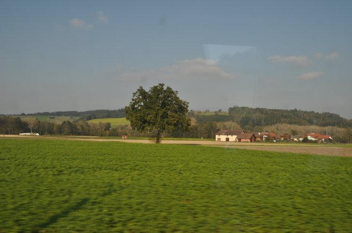从波恩去维也纳的路上 - 陶东风 - 陶东风