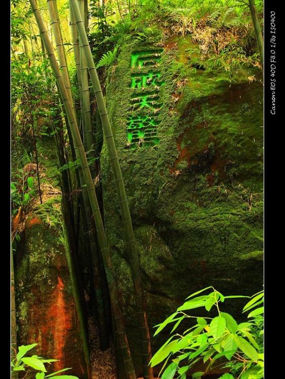[原创]放飞心情-蜀国之旅(4):蜀南石情篇 - 流浪的风 - 流浪的风之驿站