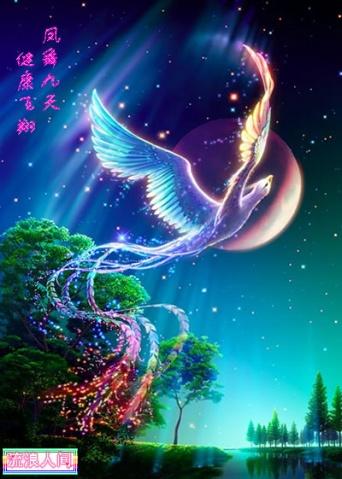 火凤凰(珍藏版) - 懿懿 - 懿阁