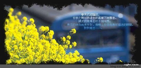 绝恋(原创小说) - 冰芯雪蕊 - 冰天雪地的足迹
